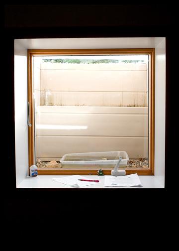 window-well