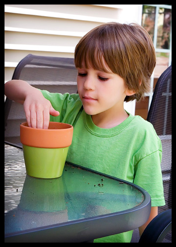 boy re-potting-plant