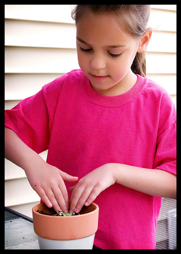 little girl re-potting plant