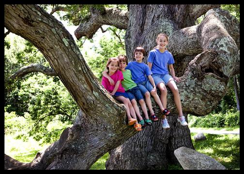 kids-in-dewey-granby-oak-tree