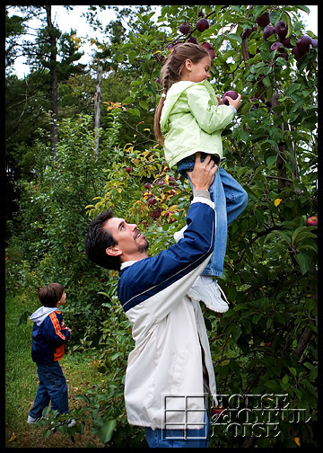 4_apple-picking
