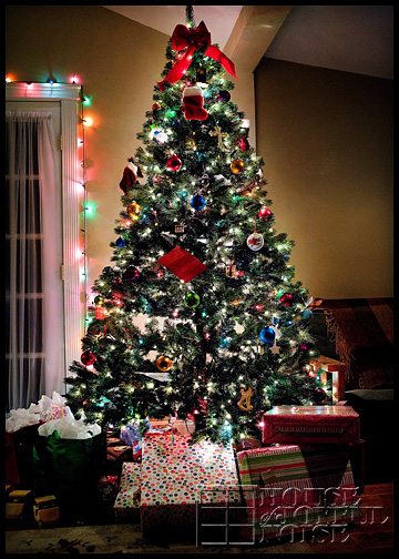 6_lit-Christmas-tree