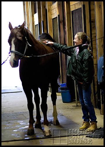 2_girl-brushing-horse