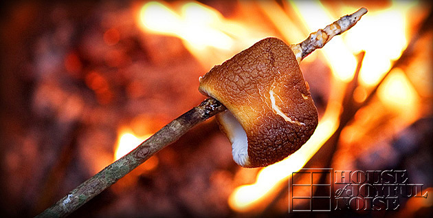 toasted-marshmallow-over-fire