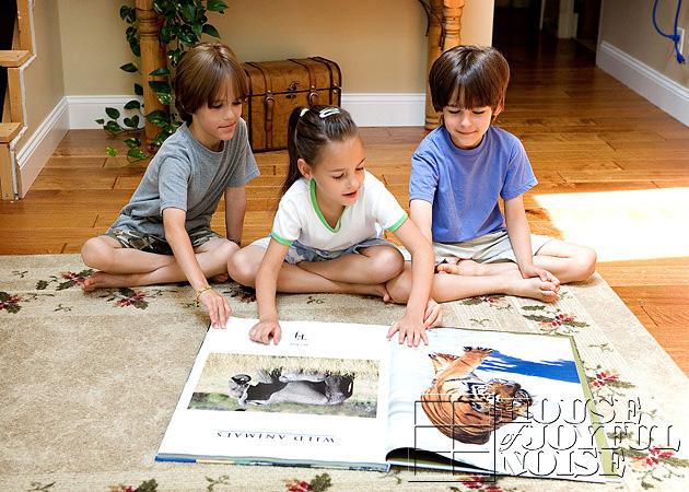 triplets-wild-animal-education-1