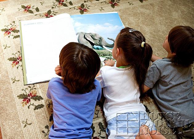 triplets-wild-animal-education-4