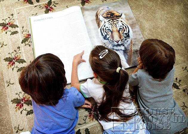 triplets-wild-animal-education-5