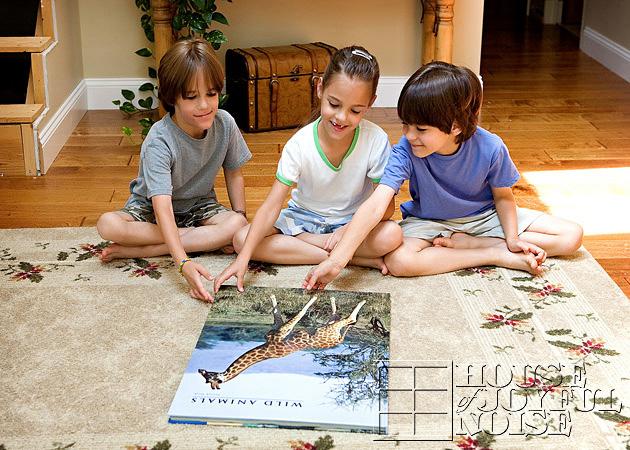 triplets-wild-animal-education