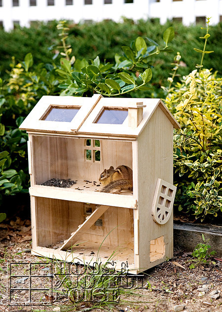 homemade-chipmunk-feeding-house-7