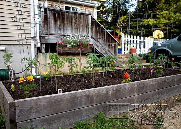 03_garden-bed