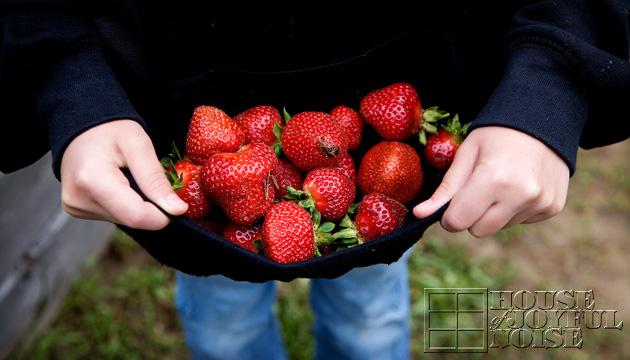 10_strawberries