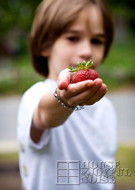 11_big-strawberry