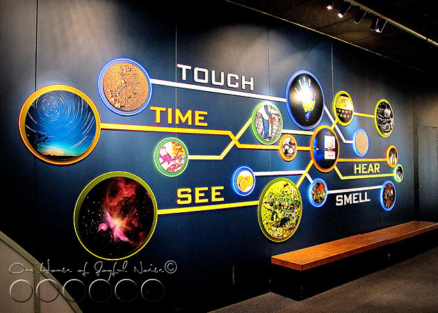 boston-museum-of-science-field-trip-16