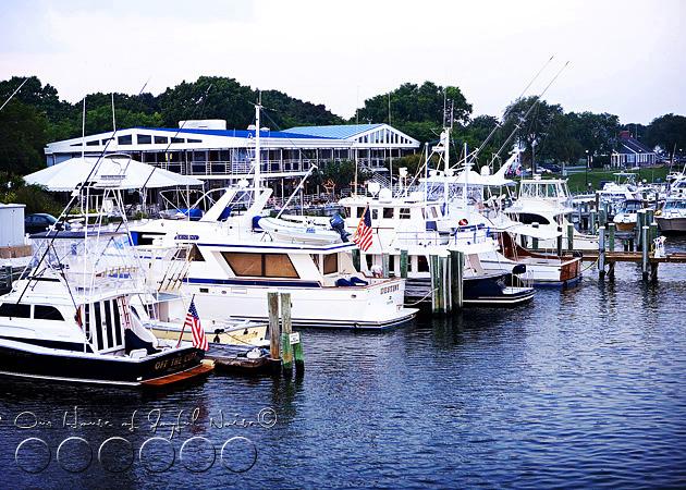 marthas-vineyard-ferry-island-queen-6
