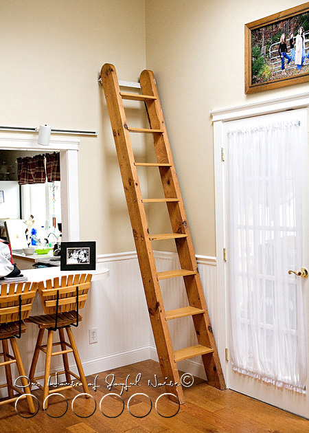 ladder-book-shelf