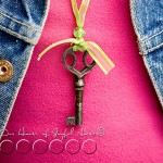 skeleton-key-accessories