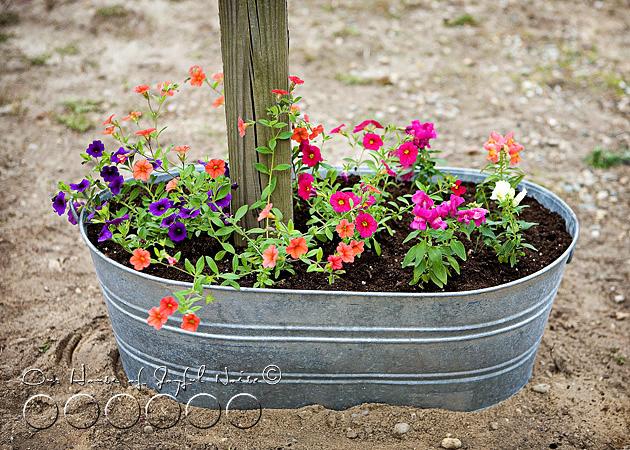 creative-mailbox-planter-ideas-2