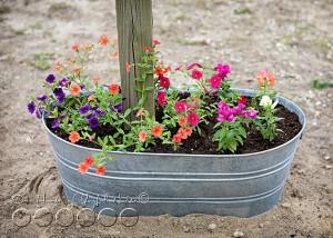 creative-mailbox-planter-ideas-3