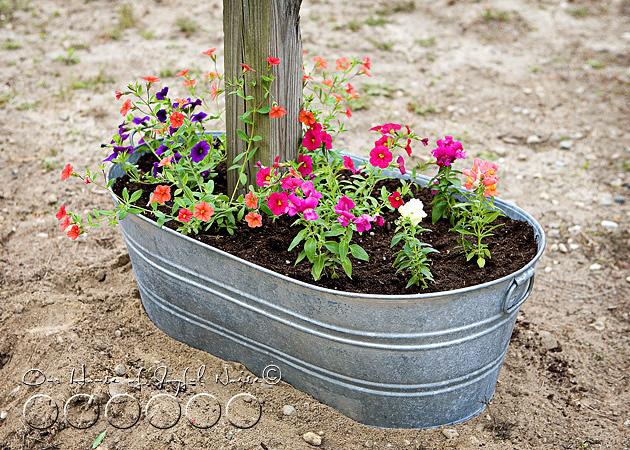 creative-mailbox-planter-ideas-4