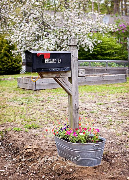 creative-mailbox-planter-ideas-5