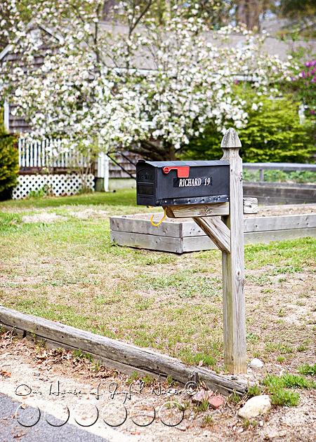 creative-mailbox-planter-ideas