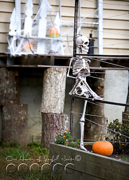 best Halloweeen decor