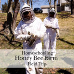 Honey Bees Farm – Field Trip