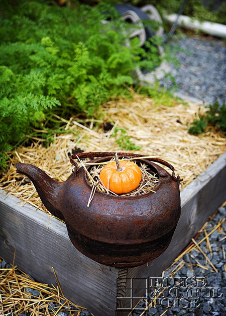 gourd and hay in rusty black kettle