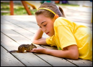 little girl hand-training chipmunk