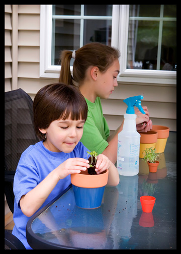 boy re-potting plant