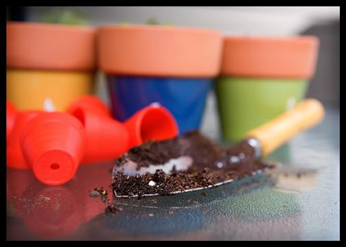 potting soil on garden shovel
