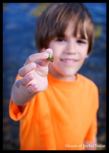 kid-showing-seashell
