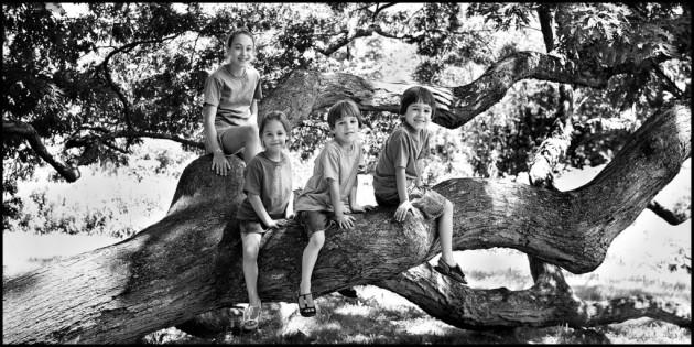 kids-on-dewey-granby-oak-limb