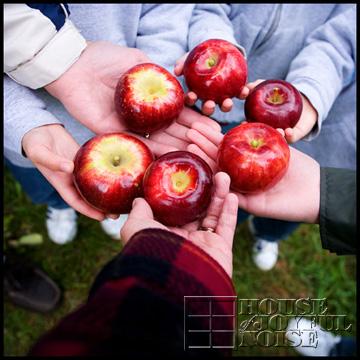 11_apples-in-hands