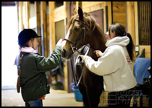 1_girl-patting-nose-of-horse-in-stable