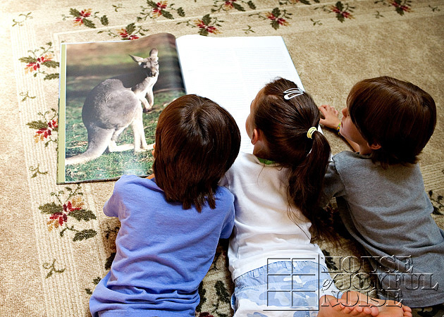 triplets-wild-animal-education-3