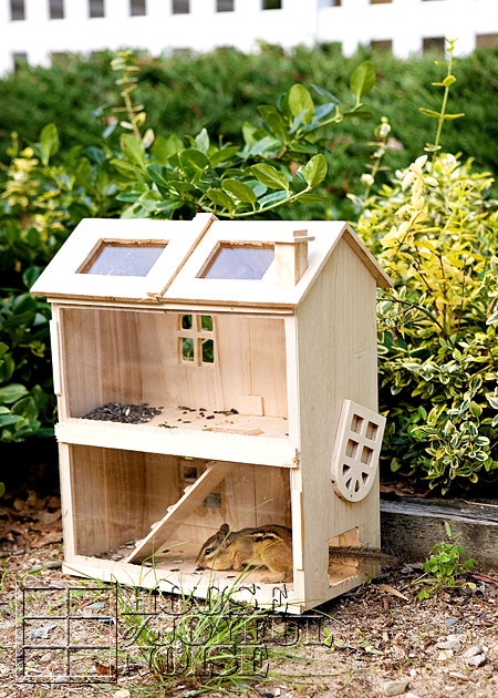 homemade-chipmunk-feeding-house-5