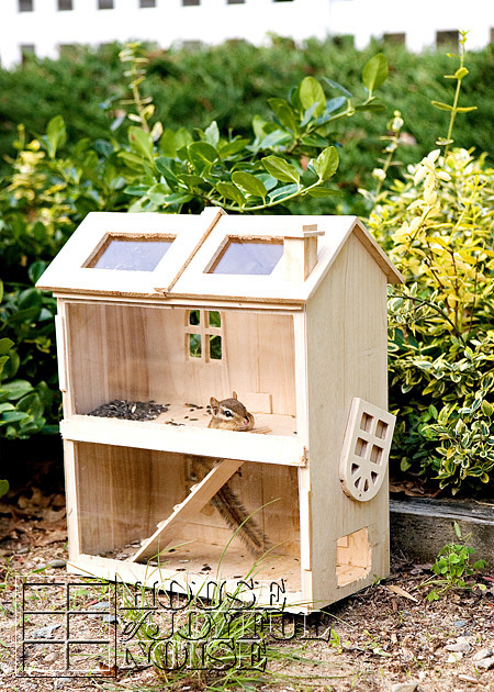 homemade-chipmunk-feeding-house-6