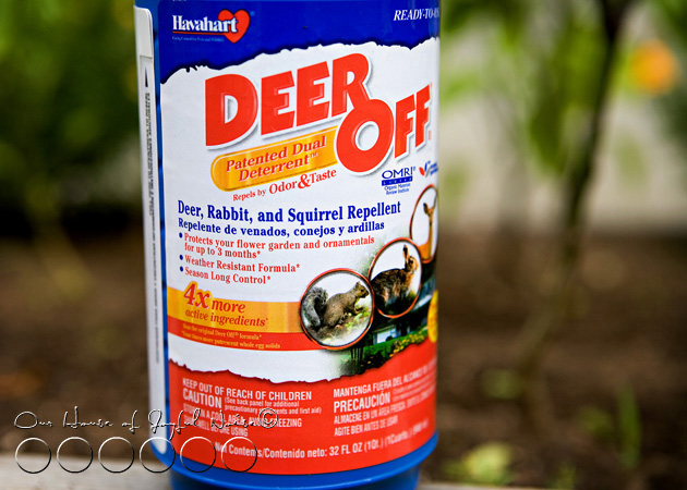 021_deer-off-for-gardens