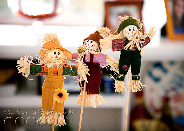 autumn-home-decor-5