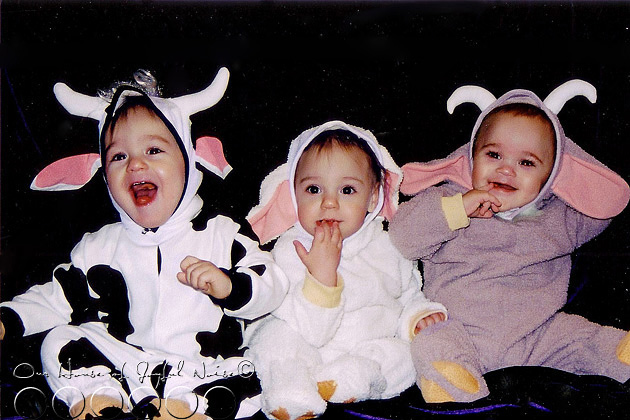 baby-farm-animal-costumes-triplets
