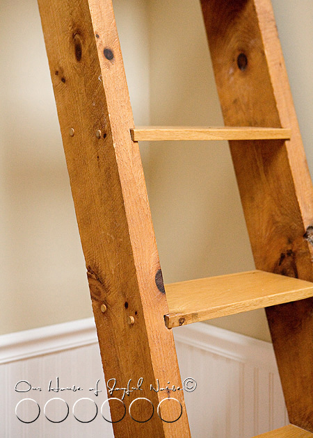 ladder-book-shelf-2