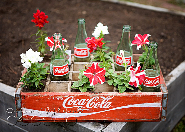coke-bottles-crate-repurposing-creative-gardening-4
