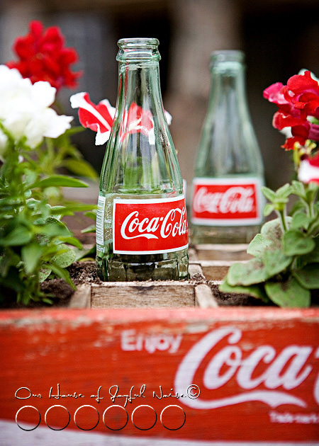 coke-bottles-crate-repurposing-creative-gardening-6
