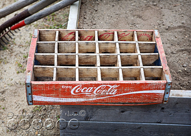 coke-bottles-crate-repurposing-creative-gardening