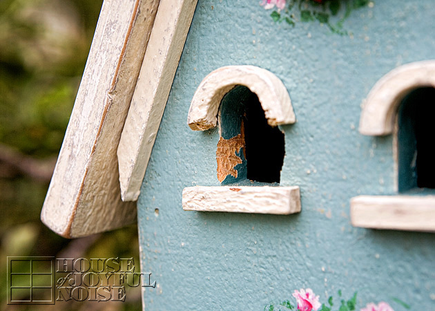 003_birdhouse-woodpecker-damage